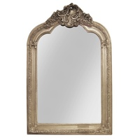 Appel Champagne Leaf Decorator Wood Framed Mirror Bevelled